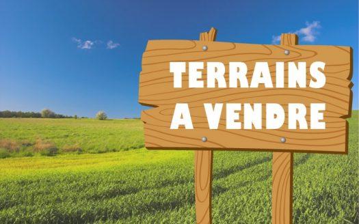 Marrakech:Terrainde15000m2 à vendre